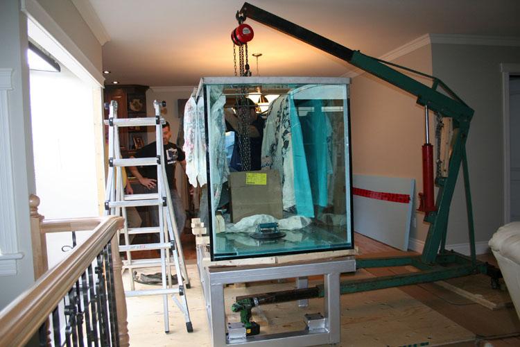 aquariums salle de filtrations viviers commerciaux. Black Bedroom Furniture Sets. Home Design Ideas
