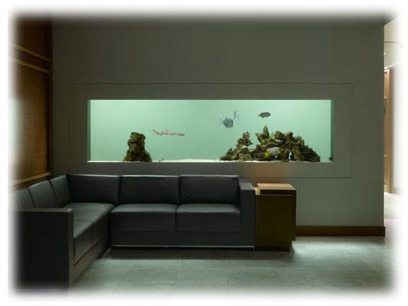 Aquariums salle de filtrations viviers commerciaux for Aquarium cadre